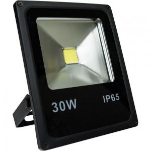 Прожектор светодиодный Feron LL-838 1COB LED 30W 6400K